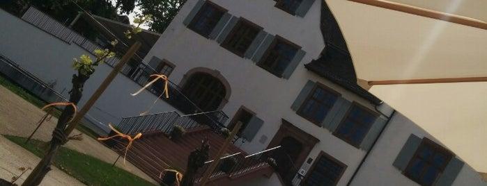 Schloss Binningen is one of Lugares favoritos de Amit.