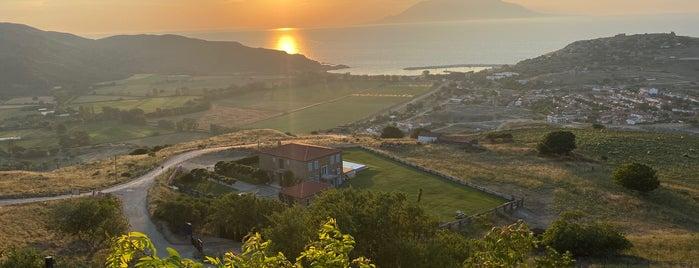 Günbatımı  Gliki Gökçeada is one of Gokceada.