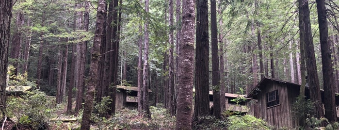 Mendocino Woodlands State Park is one of Andrew 님이 좋아한 장소.