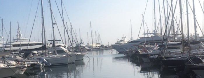 Yacht Club d'Antibes is one of Cannes.
