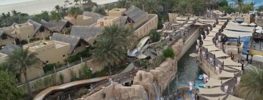 Wild Wadi Water Park is one of Дубаи.