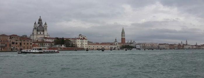 Canale della Giudecca is one of สถานที่ที่ Özge ถูกใจ.