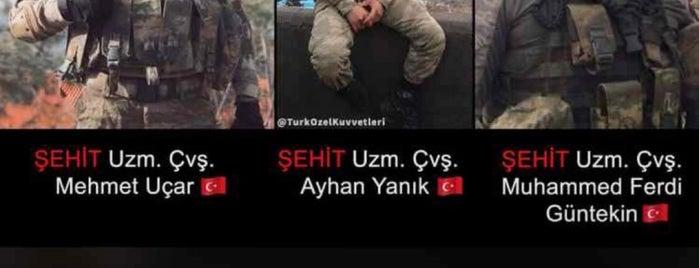 Ravza Konakları is one of Orte, die Ozn_l gefallen.