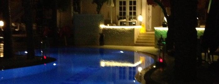 Elegance East Hotel / Luxury High Standard is one of Lugares favoritos de Tamer.
