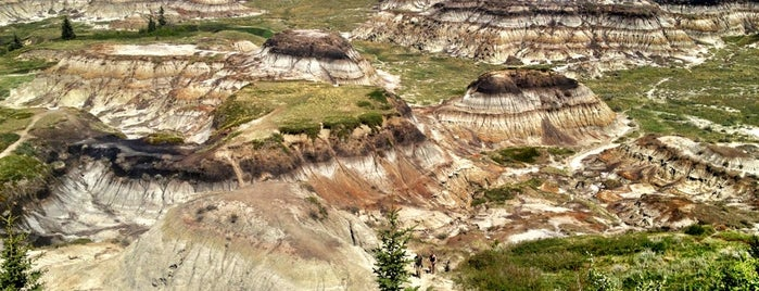 Horseshoe Canyon is one of Alberta - Wild Rose Country.