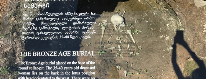 Dmanisi excavations is one of GEO Georgia.