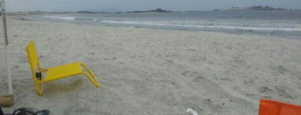 Playa Ramada is one of Locais curtidos por Javiera.