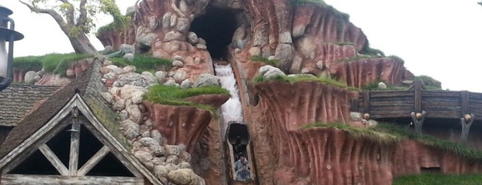 Splash Mountain is one of Theme Parks!.