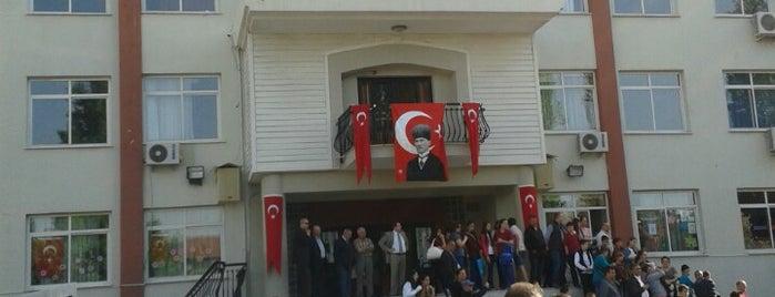 Makbule Süleyman Alkan İlköğretim Okulu is one of azmi : понравившиеся места.