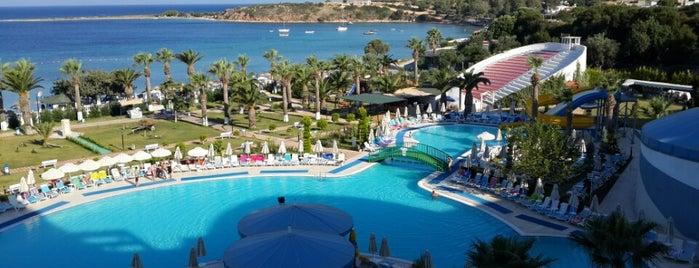 Büyük Anadolu Didim Resorts is one of mutlaka.