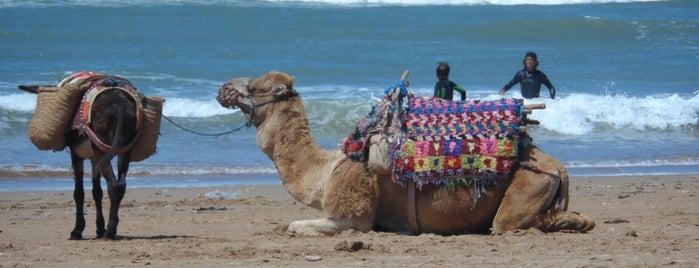 Essaouire