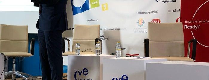 CVE is one of Consultoría/Formación.