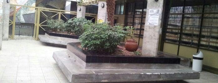 Facultad de Odontología is one of UCR.