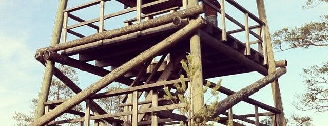 Cenas tīreļa skatu tornis is one of Cenas Tīreļa pastaiga.