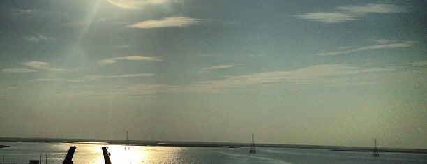 Great Egg Harbor Bridge is one of Orte, die Nicholas gefallen.