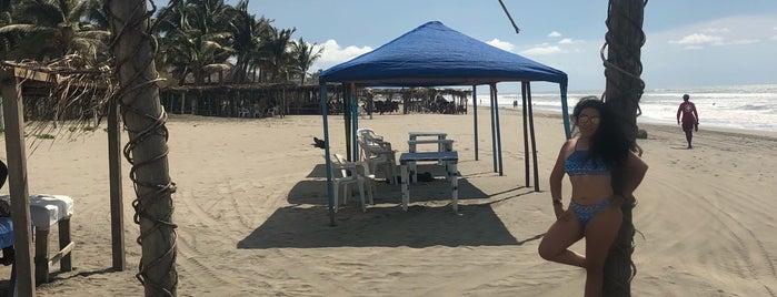 Playa La Gloria is one of Liliana'nın Beğendiği Mekanlar.