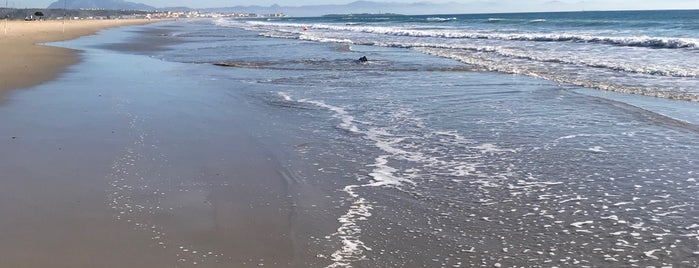 Playa de Los Pinos is one of Lieux qui ont plu à Marian.