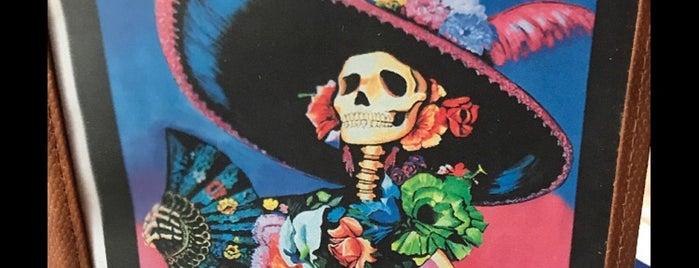 The Velvet Cactus is one of Lieux qui ont plu à Brian.