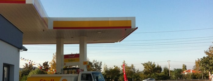 Shell is one of Posti che sono piaciuti a H.
