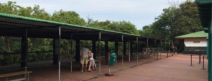 Estación Cataratas [Tren Ecológico de la Selva] is one of Foz do Iguaçu - PR.