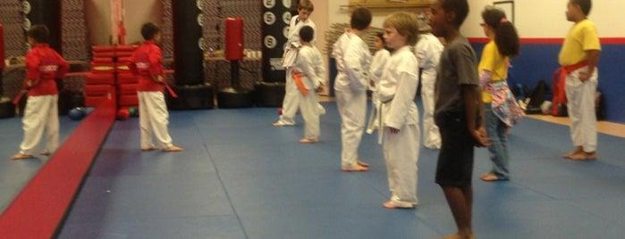 Five Tenets Martial Arts Center is one of สถานที่ที่ Ed ถูกใจ.
