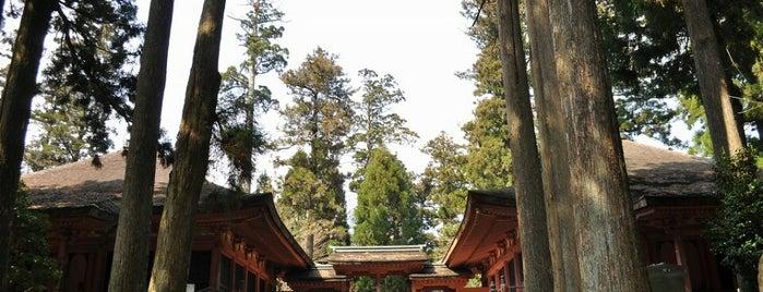 延暦寺 にない堂 (常行堂・法華堂) is one of 近江 琵琶湖 若狭.