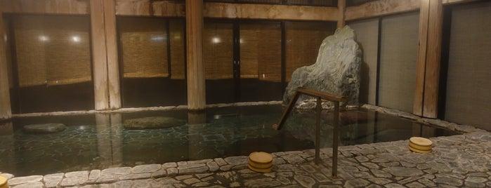 芦原温泉 is one of 行きたい温泉.