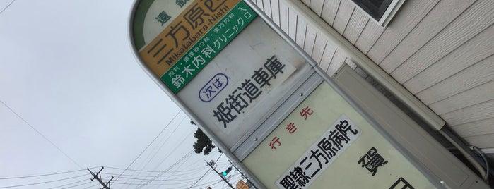 三方原西バス停(姫街道) is one of 遠鉄バス  51|泉高丘線.