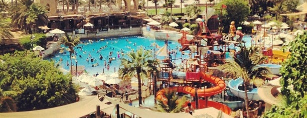 Wild Wadi Water Park is one of Dubai's very best Places = P.Favs.