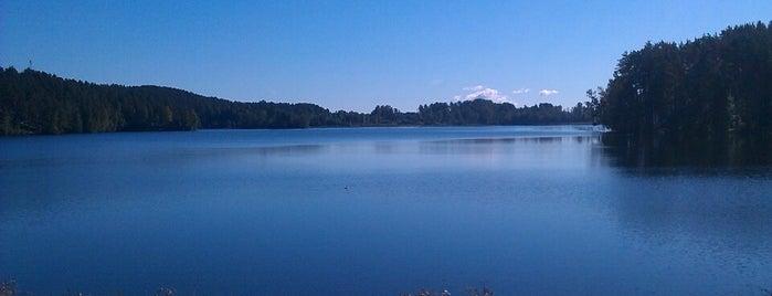 Петровское озеро is one of Сашкаさんの保存済みスポット.