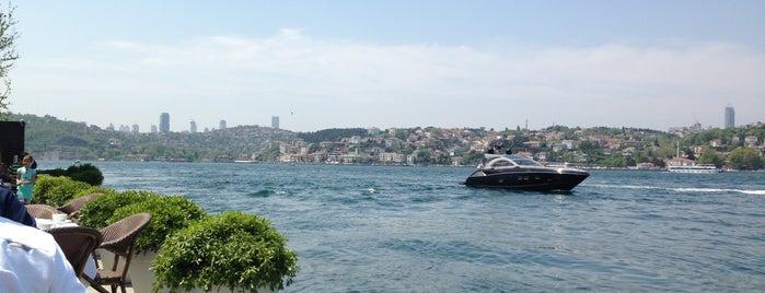 Ajıa Restaurant is one of İstanbul Denize Nazır Restoranlar.