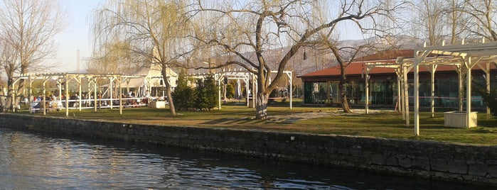 Sapanca Göl Evi Restaurant is one of liste2.