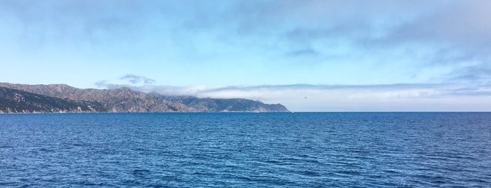Catalina Island is one of Sightseeing.