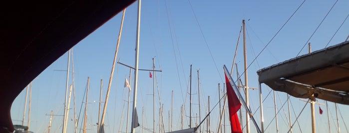 Marina Yatch Club Bodrum is one of Orte, die Dsignoria gefallen.