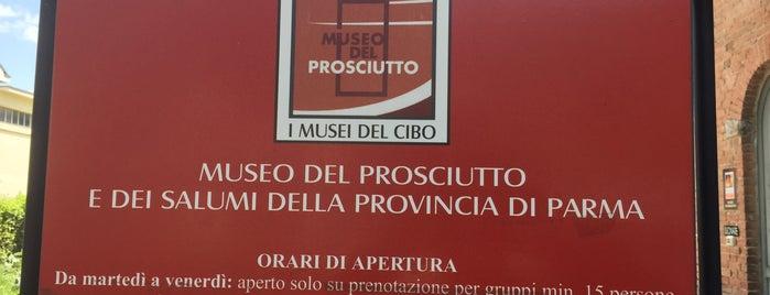 Museo del Prosciutto is one of Modena.