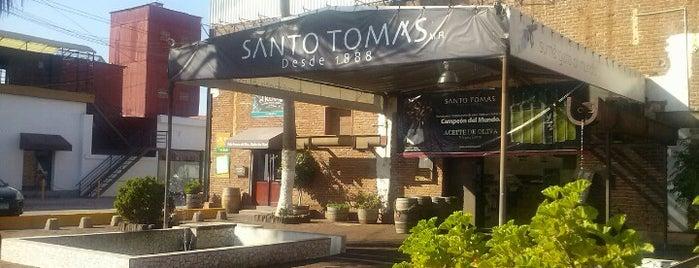 Bodega Santo Tomas is one of Ensenada: places you MUST go!.