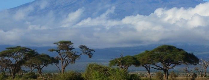 Mount Kilimanjaro is one of Seven Summits: Tops Of The World.