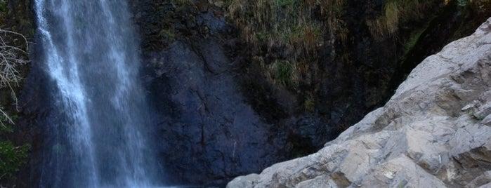 Parque Natural Aguas de Ramón is one of Chile - A fazer.
