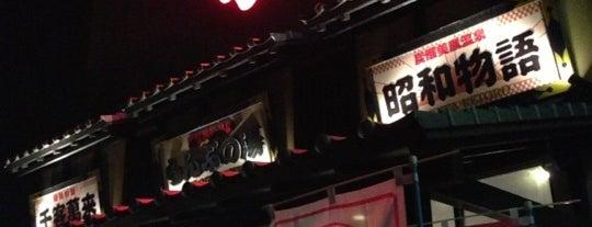 炭酸美肌温泉 らんぷの湯 花園店 is one of 温泉.