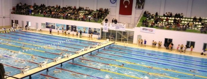 Türkiye Yüzme Federasyonu Olimpik Yüzme Havuzu is one of Lieux qui ont plu à DAS.