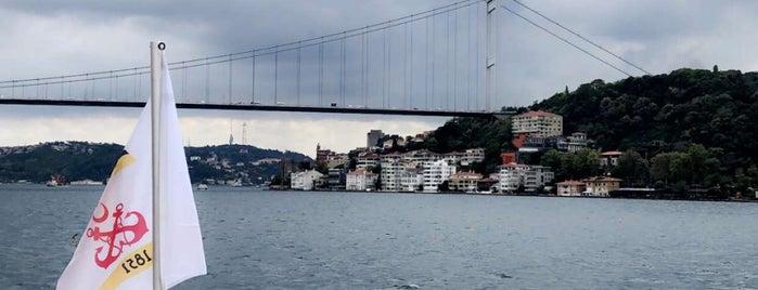 سفینه الملکیة is one of Turkey.