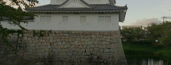 水口城 is one of 近江 琵琶湖 若狭.
