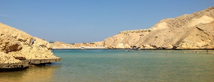 Oman Dive Center is one of Muscat.
