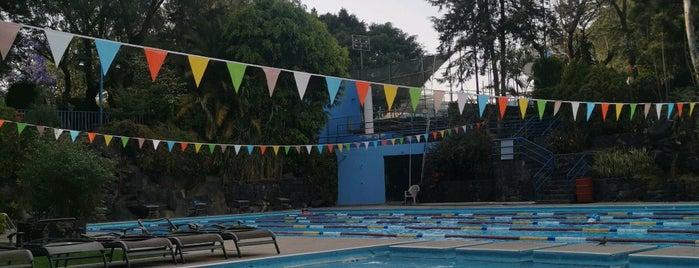 Centro Deportivo SUTERM CFE is one of Tempat yang Disukai Hugo A..