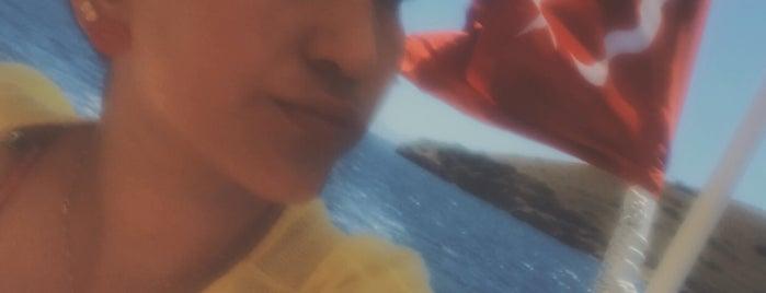 Taş Adası is one of Diving Locations.