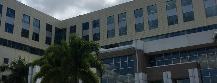Gulf Coast Medical Center is one of Locais curtidos por mark.