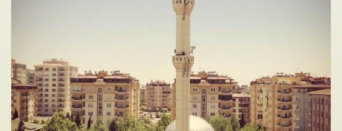 İbrahimli is one of Tempat yang Disukai Ali.