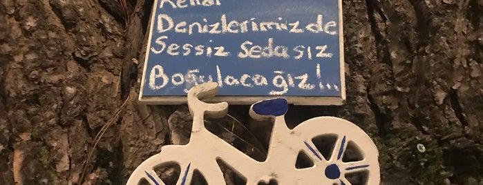 Lezzet Bahcesi Sapanca is one of 2019 Turu.