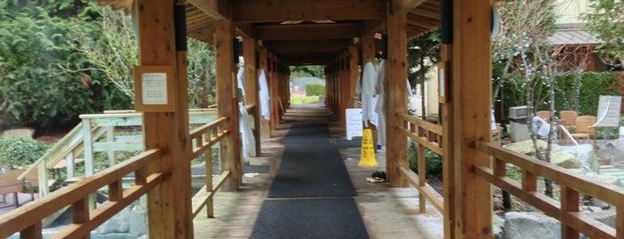 Harrison Hot Springs Resort & Spa is one of Posti che sono piaciuti a Katie.