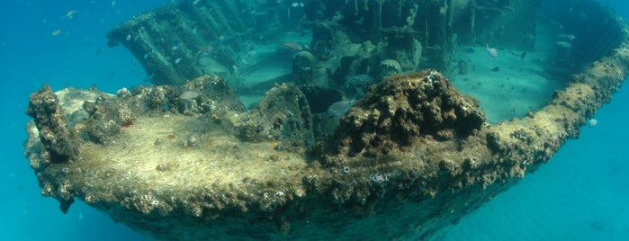 Kingston Shipwreck is one of Crazy Places.